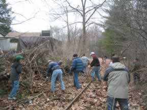 Acton Trail Clearing